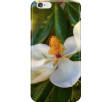 Southern Magnolia Blossom iPhone Case/Skin
