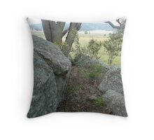 rock study 2 Throw Pillow