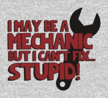 I may be a mechanic, but I can't fix stupid! by bakery