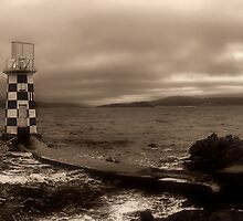 Winter Melancholy At Point Haiswell by Peter Kurdulija