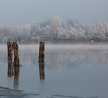 quiet misty morning on the river by mrivserg