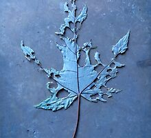 Somebody had Leaf for Lunch – Blue Three by Mike Solomonson