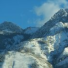 Wasatch Mountains Up Close... by Karli Martin