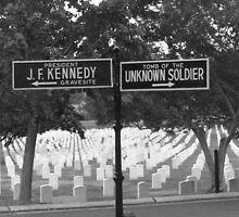 Arlington National Cemetery  by OnTheRoadAgain