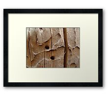 chiseled by nature Framed Print