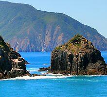 Marlborough Sounds NZ by Janine  Hewlett