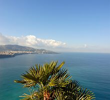 Sorrento Coast and the Gulf of Naples by Petr Svarc
