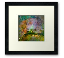 Cosmic Mushrooms 2 Framed Print