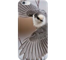 Gray Jay Take Off iPhone Case/Skin