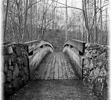 Crossing Alone by Tara Johnson