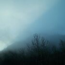 Foggy Sunrise (1) by lareejc