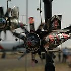 Drink Can Planes @ Avalon Airshow 2007 by muz2142
