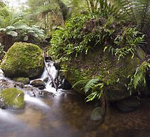 Kepple Pano 2 by Mark Jones