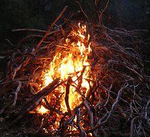 fire by Elizabeth Stevens