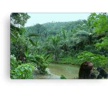 828-Tropical Riverside Canvas Print