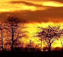 firey landscape ... by SNAPPYDAVE