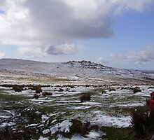 Dartmoor national park by brucemlong
