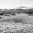 Surf on the Beach at Dallas Road Victoria B.C.  by TerrillWelch