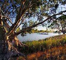 Swan Reach Ferry by KathyT