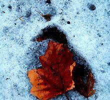 Cheer Up Leafy, It'll Be Warm Soon! by Atreju Hood