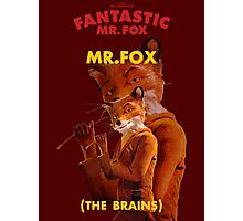 Fantastic Mr. Fox Photographic Print