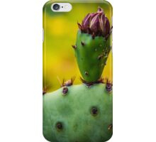 Budding Cactus iPhone Case/Skin