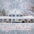 Merry Christmas by Shelley Neff