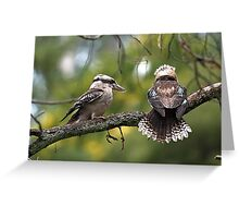 Kookaburras at Sherbrooke Forest Greeting Card