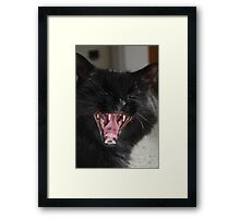 Laughing Framed Print