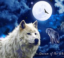 Dream of the White Wolf by galet09