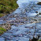 hoswick stream by delfinada
