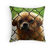 Another prisonier Throw Pillow