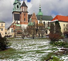 Wawel Cathedral, Cracow, Poland by M G  Pettett