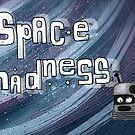 Space Madness by Ed Clews