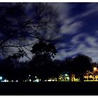 Night Park by blackberrymoose