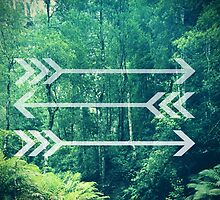 Arrow Background by Emily Lanier