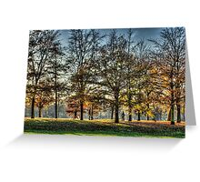 Romance in Greenwich Park Greeting Card