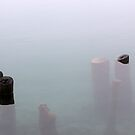 Old Pilings in Fog 2 by marybedy