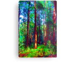 Psychedelic RainForest Series #1 - Yarra Ranges National Park , Marysville Victoria Australia Metal Print