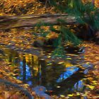 Impressions of a Little Forest Creek in the Fall by Georgia Mizuleva