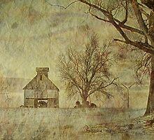 McLean County winter by K2D2vaca