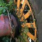 The Colour Wheel by coffeebean