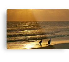 Early one morning,  just as the sun was rising. Metal Print