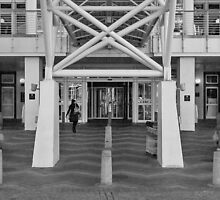 To the revolving door by awefaul