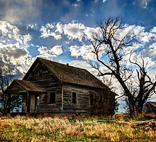 Abandoned House by Alan Gamble
