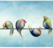 Finches On Parade - Excerpt Three Photographic Print