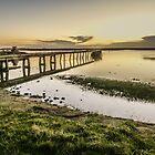 Walney Channel by davidautef