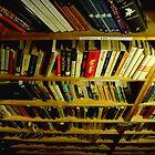 Abundance of Books by RachelLea