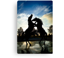 Stallions Rampant at Rymill Coonawarra Winery Canvas Print