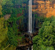 Fitzroy Falls by Warren. A. Williams